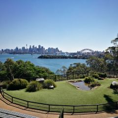 Sydneyficant User Photo