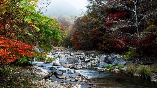 天華山國家森林公園