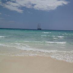 洛克島用戶圖片