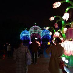 Chengdu Happy Valley User Photo