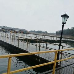 柘林湖風景區用戶圖片