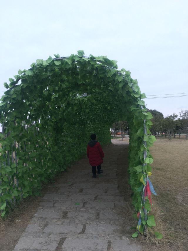 야린 현대농업원(원저우)