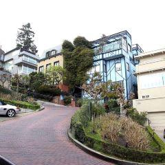 Lombard Street User Photo