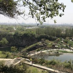 Shanghai Chenshan Botanical Garden User Photo