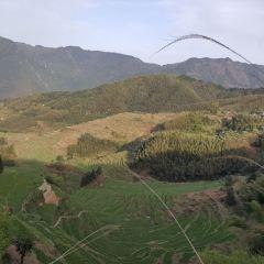 雲和梯田景區用戶圖片