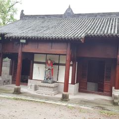 Taping Temple User Photo