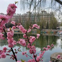 Xuanhua People's Park (East Gate) User Photo