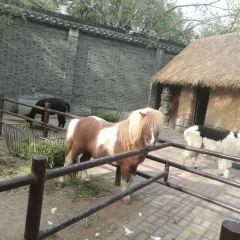 Zhuyuwan Scenic Spot User Photo
