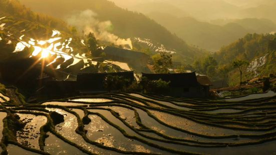 九龍坡農家樂