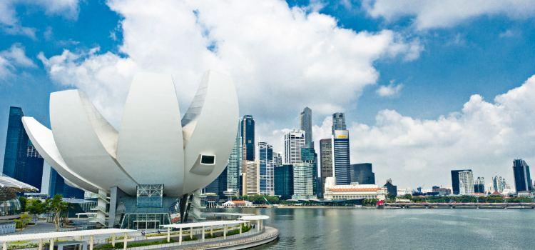 新加坡藝術科學博物館