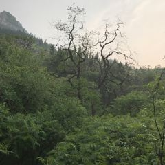 井塘古村•玲瓏山のユーザー投稿写真