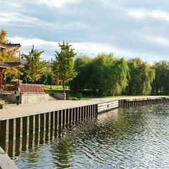Ping Tom Memorial Park User Photo