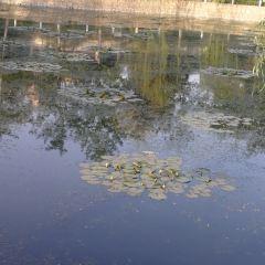 Baigou Park User Photo