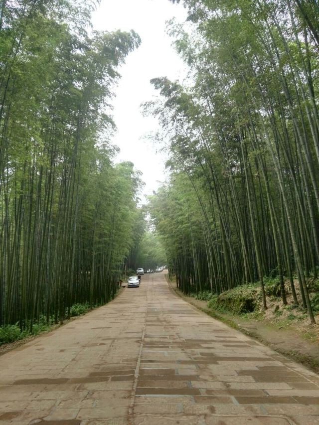 "Shunan Zhuhai (""South Sichuan Bamboo Sea"") National Park"