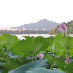 쉬안우후(현무호) 여행 사진