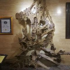 Fuwang Mahogany Museum User Photo
