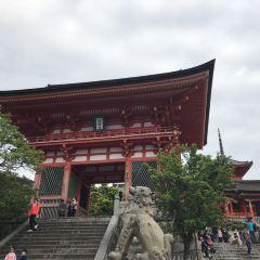 난바신사 여행 사진