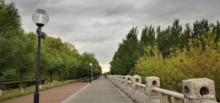沿江公園2