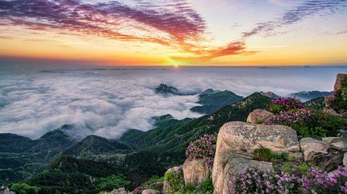 泰山風景區