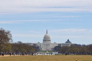 Washington D.C.,Recommendations