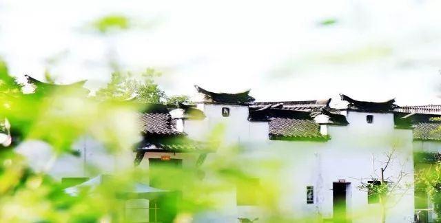 賞雪景、品美食、尋年味…就去浙9個最適合冬日撒歡的古村鎮!