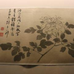 텐진 박물관 여행 사진