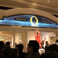 O Show by Cirque du Soleil User Photo