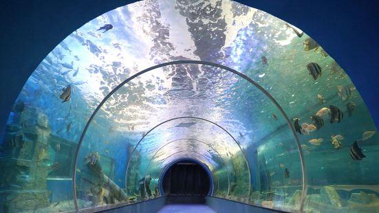 婁底海立方海洋公園