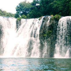 樹海瀑布用戶圖片