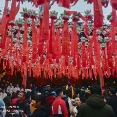 Linshun Temple(No.1 Caishen Temple) User Photo