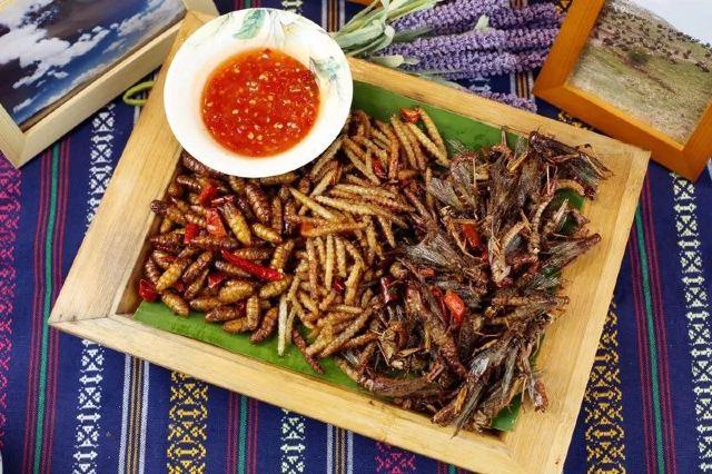 爆料!徐州發現《舌尖》爆款雲南菜!超正野生菌、昆蟲宴、竹子酒... 款款不踩雷