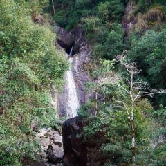 화암 국가삼림공원 여행 사진