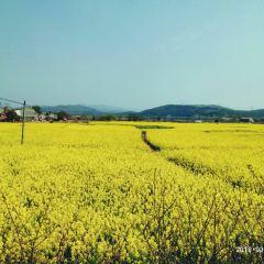 관음호 생태문화 관광리조트 여행 사진