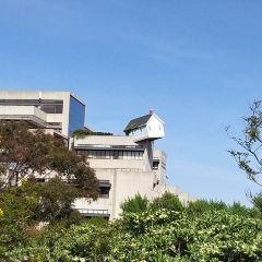 加州大學聖地亞哥分校用戶圖片