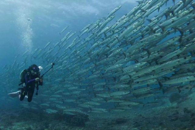 World's Most Incredible Dive Locations