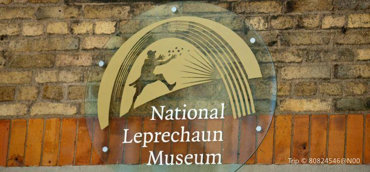 The National Leprechaun Museum2