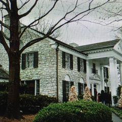 Elvis Presley's Home User Photo