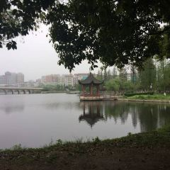 大冶市青龍山公園用戶圖片
