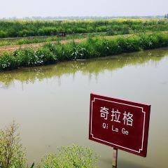 採蓮湖垂釣俱樂部用戶圖片