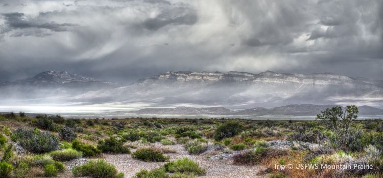 Tule Springs Fossil Beds National Monument1