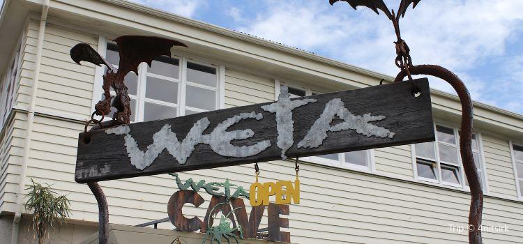 The Weta Cave1