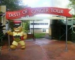 The Ginger Factory User Photo