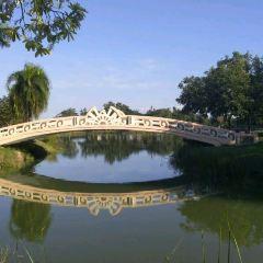 Nong Thin Public Park User Photo