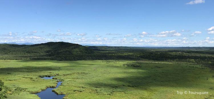 Kottaro Swamp Observatory2