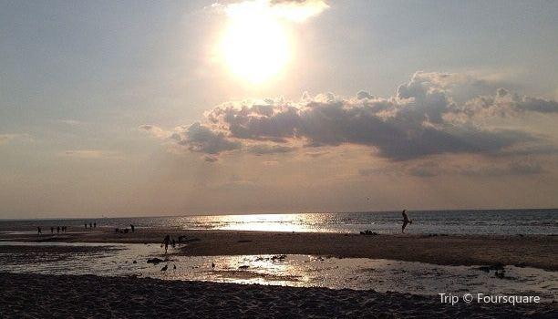 Mayflower Beach3