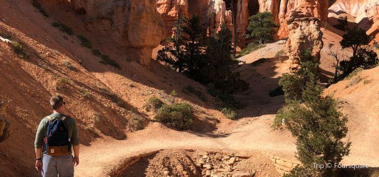 Queen's Garden Trail1