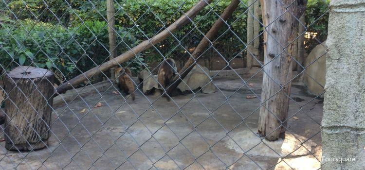 Zoologico Nacional1