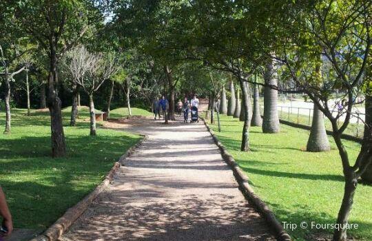 Parque Vila Guilherme - Trote