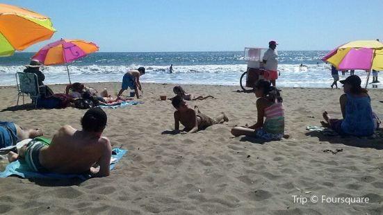Canopy Playa Blanca