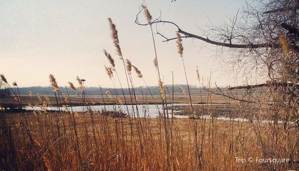 Cheesequake State Park   Tickets, Deals, Reviews, Family